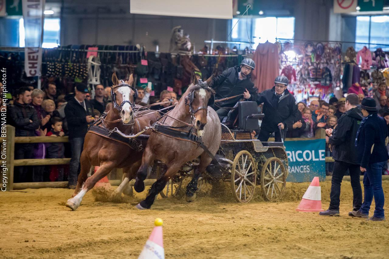 France trait salon de l 39 agriculture palmar s 2015 du - Salon de l agriculture resultat concours ...